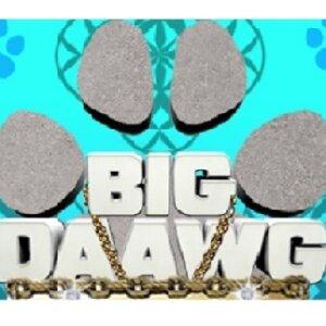 Big Daawg